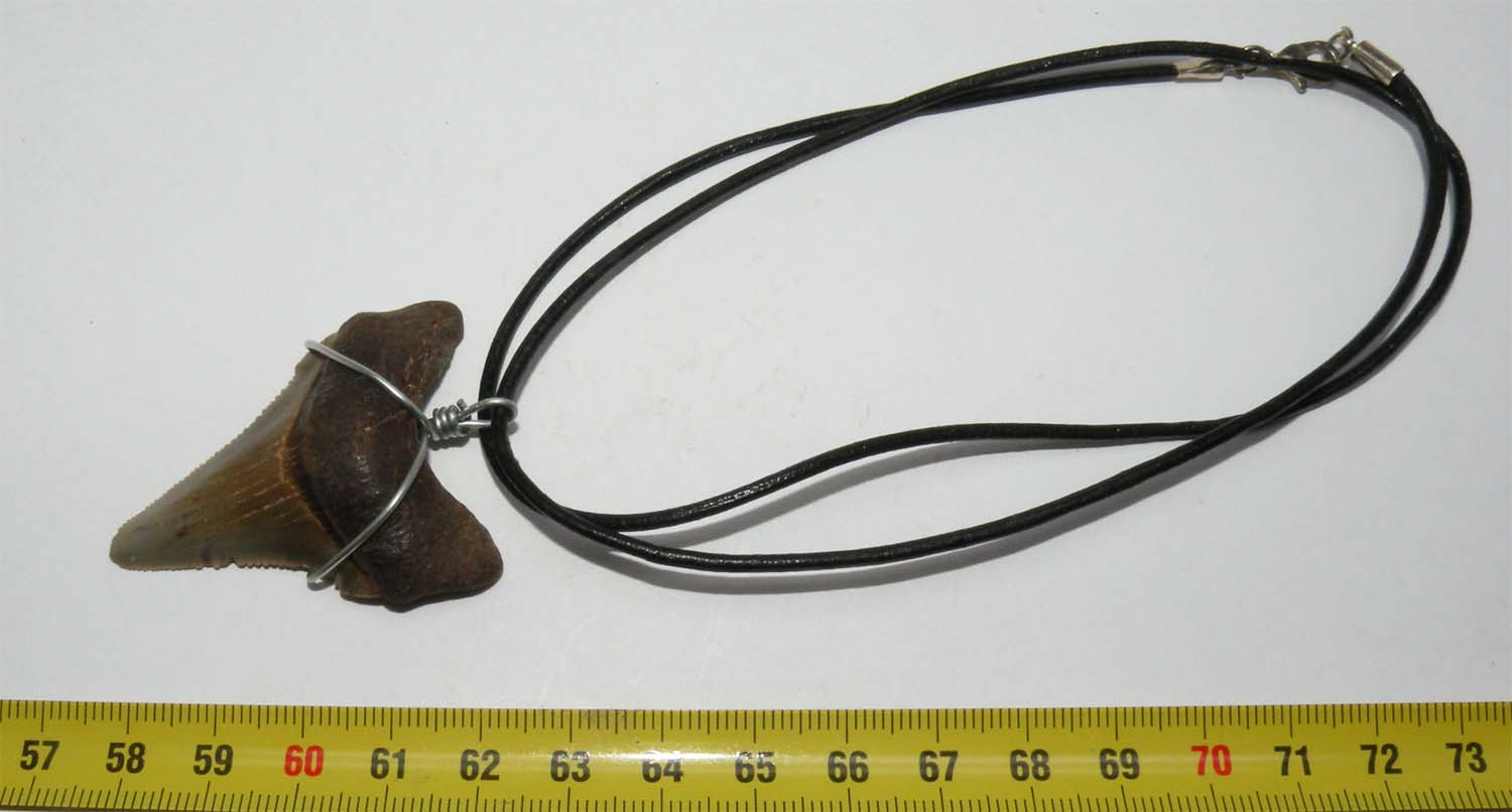 https://www.nuggetsfactory.com/EURO/megalodon/collier/53%20collier.jpg