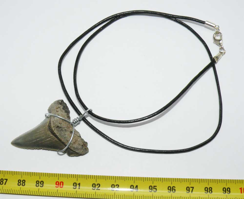 https://www.nuggetsfactory.com/EURO/megalodon/collier/56%20collier.jpg