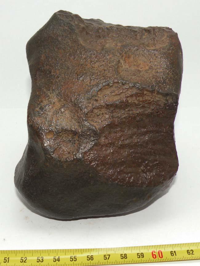 https://www.nuggetsfactory.com/EURO/meteorite/nwa/abdellah/27%20Abdellah%20NWA%20I.jpg